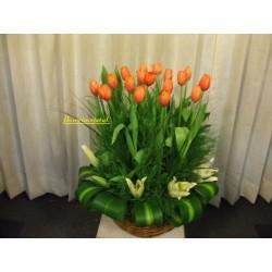 Arreglo de 20 tulipanes...